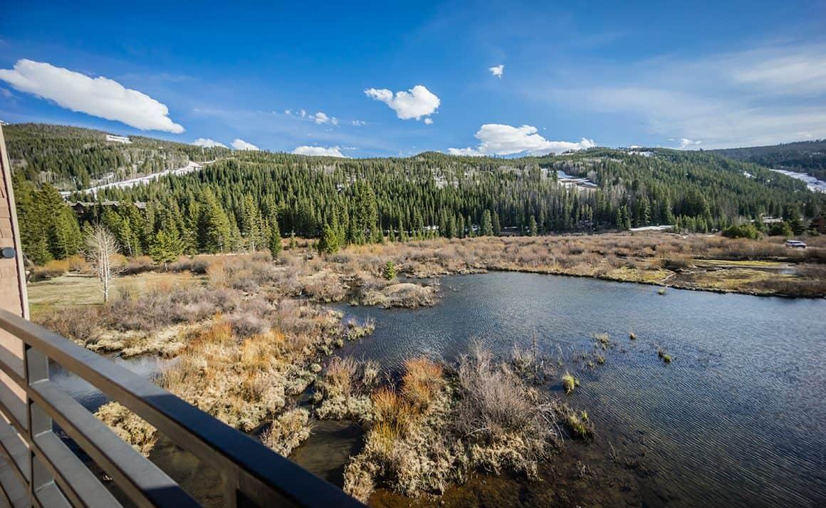 Pond & Wetlands - in River Bank Lodge Condo 2903